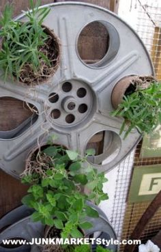 The reels were put to use as vertical planters. The little herb pots fit perfectly in the holes. All you need to do is slip them in at a slight angle to keep them in place.