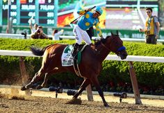 Victor Espinoza, celebrates atop American Pharoah #5, after winning the 147th running of the Belmont Stakes at Belmont Park on June 6, 2015 in Elmont, New York. With the wins American Pharoah becomes the first horse to win the Triple Crown in 37 years. (Al Bello/Getty Images)      American Pharoah has won horse racing's first Triple Crown in 37 years, achieving one of the sporting world's rarest feats. (AP)