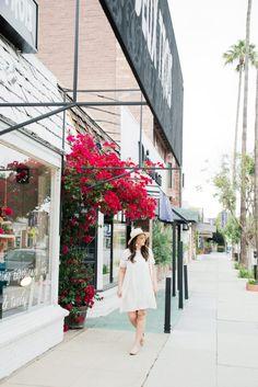 lace yoke dress- lespec sunglasses- chloe flats- cuyana bag- in LA