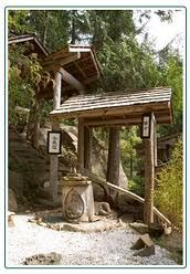 treehouse cabins - Google Search