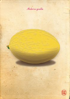 Melone giallo, ortaggi, illustrazione, arte digitale - Yellow melon, vegetables, illustration, digital art