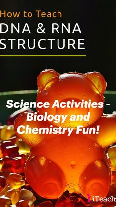 Science Classroom, Teaching Science, Science For Kids, Science Activities, Teaching Tips, Life Science, Science Experiments, Health And Fitness Magazine, Health Fitness