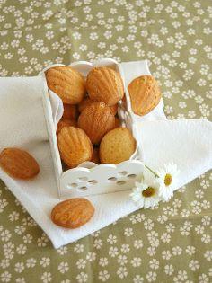 White chocolate and lemon madeleines / Madeleines de limão siciliano e chocolate branco by Patricia Scarpin, via Flickr