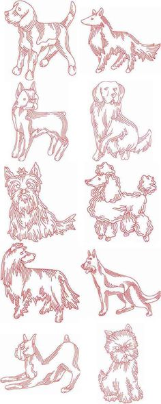 JN Dogs Embroidery Machine Design Details