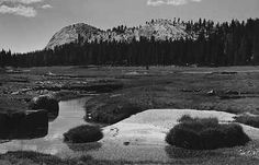 Echo Creek, c. 1938, Black and white photograph. National Museum of Wildlife Art, Jackson Hole, WY, Gift of Sarah S. and David H. McAlpin )   On the Trail with Ansel Adams and Georgia O'Keeffe