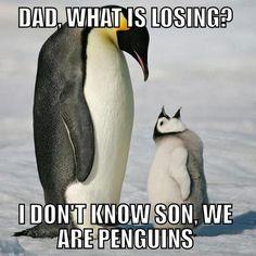 Pittsburgh Penguins haha @Nicole Novembrino Novembrino Novembrino White