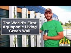 Green walls + aquaponics = so many learning opportunities for students!