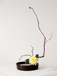 Икебана Ikebana Ikebana Flower Arrangement, Ikebana Arrangements, Beautiful Flower Arrangements, Floral Arrangements, Beautiful Flowers, Arte Floral, Deco Floral, Peonies Garden, Flowers Garden