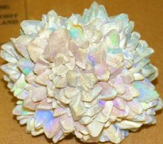 Australian opal cluster -Looks just like a Chrysanthemum ! WoW !