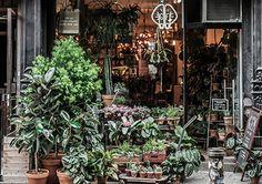 Green Fingers Market, NY