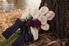 Wedding Photography + Portrait Artist Anne Brande + Ludwig Photography