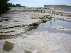 Devonian Fossil Gorge in Iowa // Even has a campground nearby