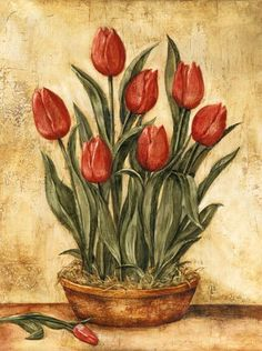 Potted Tulips (Tina Chaden)