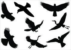 Bird Silhouette Flying Bird Silhouette Flying Bird Silhouette Clip Art