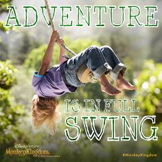 What was your latest adventure? Share your story with ‪#‎AdventureIsInFullSwing‬ ‪#‎MonkeyKingdom‬