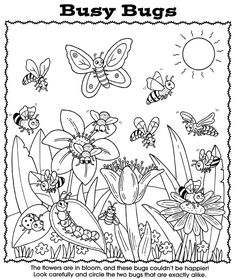 "Nature Worksheet: Busy Bugs Puzzle ""Bugs Activity and Coloring Book"". Look for the ""perfect matching couple"" it is really not that easy! from the Great Publisher and for sale at Dover Publications Insect Coloring Pages, Garden Coloring Pages, Spring Coloring Pages, Flower Coloring Pages, Animal Coloring Pages, Coloring Book Pages, Coloring Pages For Kids, Coloring Sheets, Spring Animals"