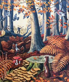 """Illustration by C. F. Tunnicliffe from the Ladybird book """"What To Look For in Autumn"""""""