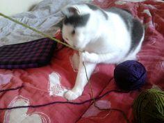 Wäinö playing with yarn