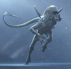 Xeno in full sprint Alien Vs Predator, Predator Movie, Predator Alien, Arte Alien, Alien Art, Aliens Movie, Aliens And Ufos, Alien Creatures, Fantasy Creatures