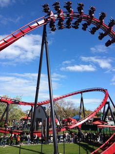 X-Flight #SixFlags Great America @Tess Rafferty Flags  #rollercoaster