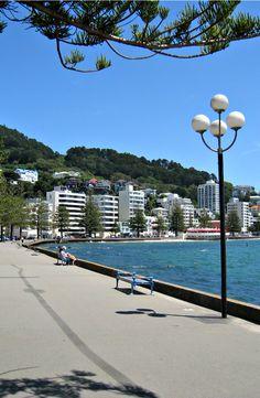Oriental Bay, Wellington. New Zealand