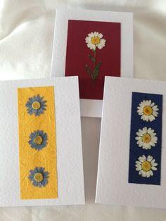 Three Handmade Pressed Daisy Cards £9.00
