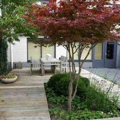 Backyard Landscaping, Beach House, Contemporary Gardens, Villa, Sidewalk, Planters, Roof Gardens, Landscape, Pergola