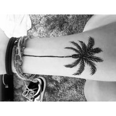 Billedresultat for palm tree tattoo