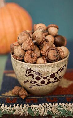 little bowl of acorns