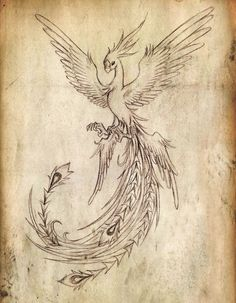 flying-phoenix-bird-tattoo-design.jpg (760×978)