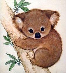 Koala ~ Artist Ruth Morehead