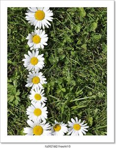 """""""L - Letters of daisies"""" - Art Print from FreeArt.com"""