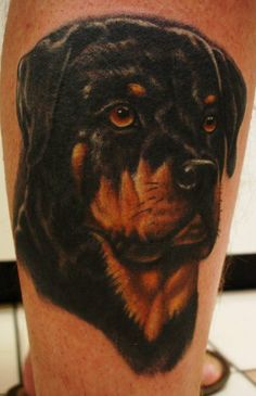 Rottweiler Dog Tattoo by Mike Parsons #Tattoos #Rottweiler #Dog #DogTattoo http://tattoopics.org/rottweiler-dog-tattoo-by-mike-parsons/