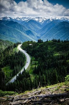 time for an adventure -   Hurricane Ridge, Olympic National Park, Washington -   photo via roadtrippers