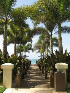The beautiful walkway to the Turks and Caicos beach. It's hard to beat that view!