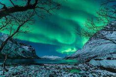 Beautiful Aurora borealis over Tromsø, Norway