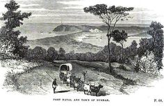 Before Durban became a city Durban South Africa, African History, Historical Society, Places To Visit, Birth, Painting, Outdoor, Live, Photos