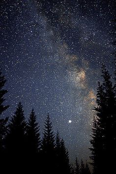 Sitting quietly and staring at the night sky