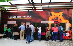 Nueva instalación: El Mundo de los Anfibios