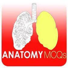 Download anatomy mcqs pdf free | Medstudentscorner | Medical