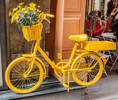 Pedal Petal Power | Flickr - Photo Sharing! Mountain Bike Shop, Bicycle Store, North Palm Beach, Pink Bike, Performance Bike, Vintage Bicycles, Rainbow Colors, Retro, Yellow