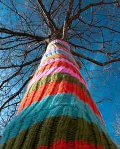 "One of 99 yarnbombed trees in Austin, Texas- and people wonder why we say ""keep Austin weird"""