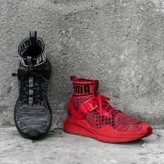 PUMA IGNITE evoKNIT,  #IGNITEevoKNIT #PUMA #sneaker, #agpos, #sneaker, #sneakers, #sneakerhead, #solecollector, #sneakerfreaker,  #nicekicks, #kicks, #kotd, #kicks4eva #kicks0l0gy, #kicksonfire, #womft, #walklikeus, #schuhe, #turnschuhe, #yeezy, #nike, #adidas, #puma, #asics, #newbalance #jordan, #airjordan, #kicks