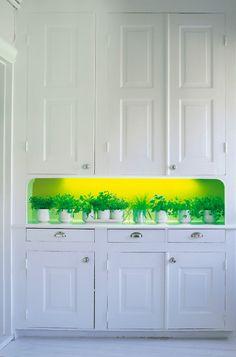"""Grönskande blickfång. Är hela hemmet vitt och du vågar inte göra större förändringar? Måla ett hyllplan eller som här en vägg i en hylla och sätt belysning så framhävs den ytterligare som en spännande accent i rummet. Här har Alcros färg """"Passion"""" använts."""