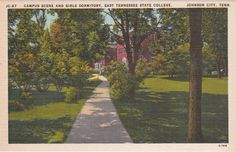 Johnson City Tennessee Vintage Postcard by PicturesFromThePast