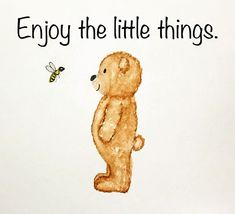 Enjoy the little things. #teddybear #bee #honeybee #bumblebee