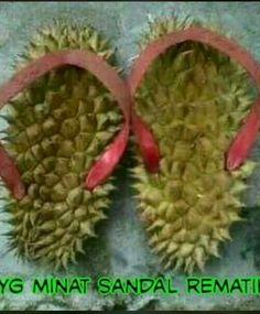 10+ Download Gambar Durian Lucu