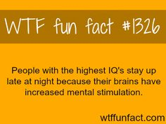 PEOPLE with the highest IQ's MORE OF WTF FACTS are coming HERE smart people, movies and fun facts