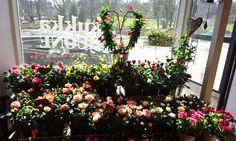 Kukkakauppa Kukkahuone Meritorni - Flowershop  #äitienpäivä #mothersday