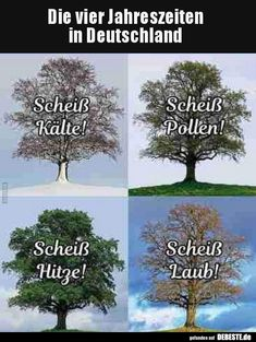 The four seasons in Germany . Winter Pictures, Cool Pictures, Funny Pictures, Facebook Humor, Funny Quotes, Funny Memes, Jokes, Winter Illustration, Winter Kids